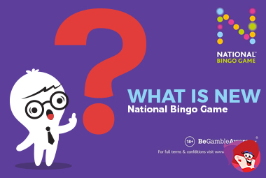 The New National Bingo Game - All You Need to Know