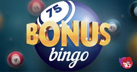 A Dummy's Guide to Online Bingo Bonuses