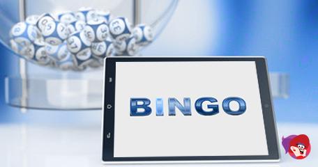 The Rise in Video Bingo Popularity