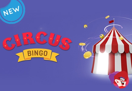 Circus Bingo Relaunches With Better Offerings