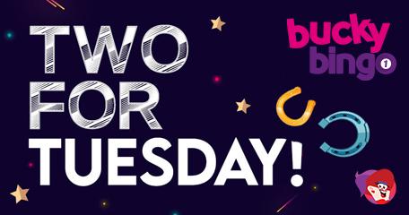 Bucky Bingo: 2-for-1 Tuesdays Each Week in June!
