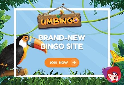 Get to Know Umbingo