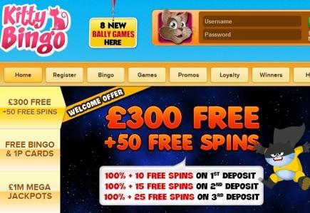 Kitty Bingo Player Wins Big During Free Spins Bonus