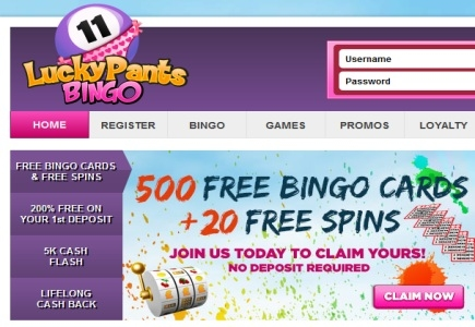 Wild Win for Lucky Pants Bingo Punter on Tiger Treasure Slots