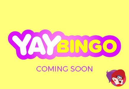 Yay Bingo Launching Soon!