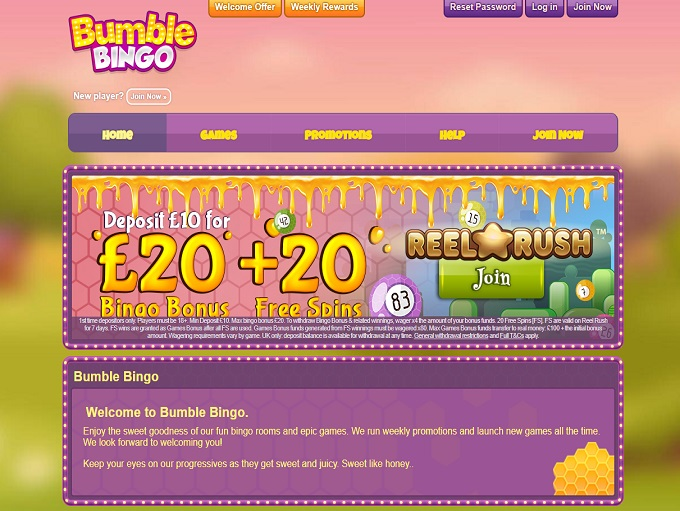 Bumble Bingo Home