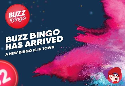 Brand New Buzz Bingo Has Arrived!