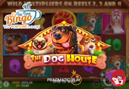 It's Time to Get Yourself Out of the Dog House and Into the Big Bucks!