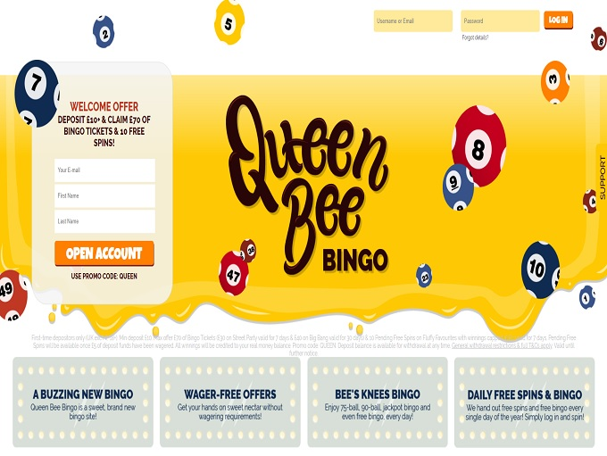 Queen Bee Bingo Home