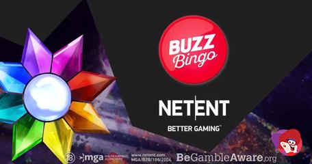 NetEnt Goes Live with Buzz Bingo